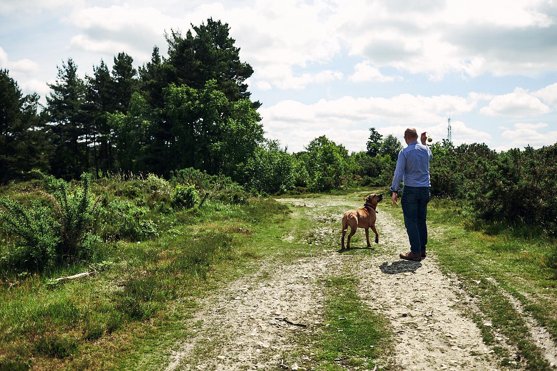 Photo of a dog on a walk