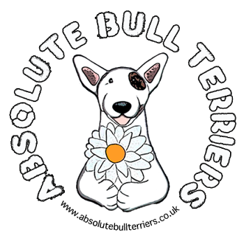 Absolute Bull Terriers Logo