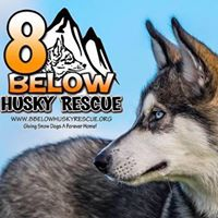 Eight Below Logo