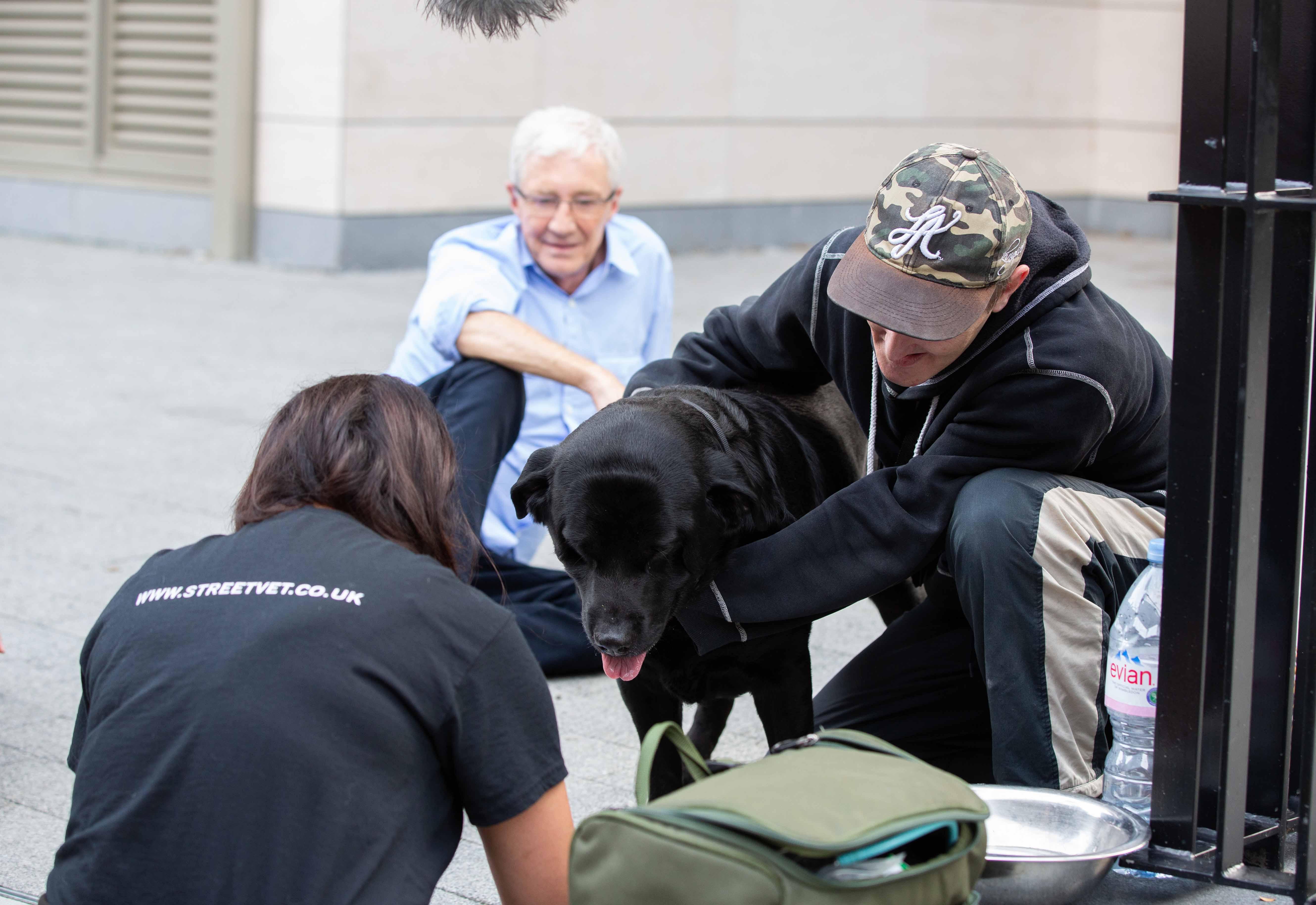 Paul O'Grady and StreetVet treating dogs on the street