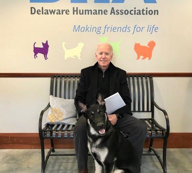Joe Biden with his dog, Major